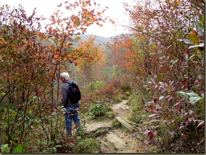 trail at graveyard fields