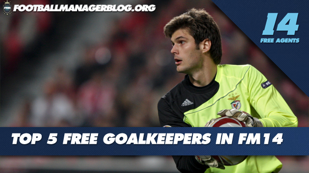 Top 5 Free Goalkeepers FM 2014