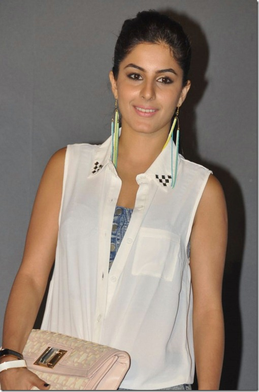 Actress Isha Talwa at Action 3D Movie Audio Release Photos