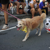 Pet Express Doggie Run 2012 Philippines. Jpg (125).JPG