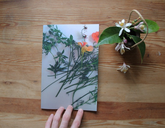 Jaime Rugh - Backyard Flowers Book 1