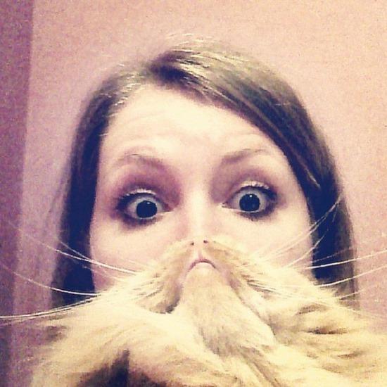 Barbas de gato (6)