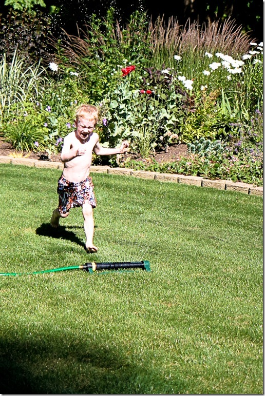 pool-sprinkler time-13 blog