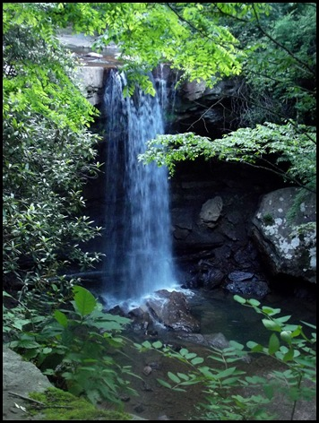 Ohiopyle State Park 066