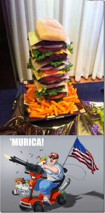 america-murica-ca-016