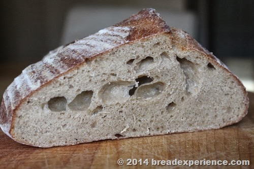 Crumb Shot of Bread with Sprouted Wheat Flour