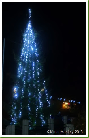 Bilbrook at Christmas