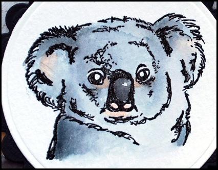 Koala 6-2_redigerad-1