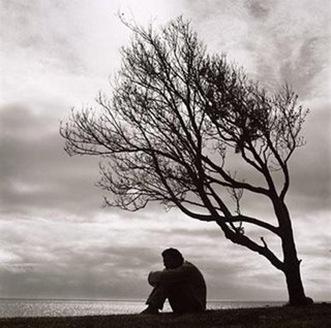 Alone-Tree-sobarblog
