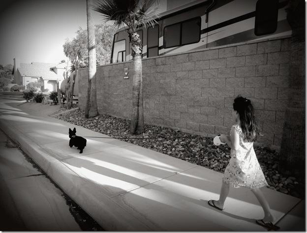 dog walk 038A