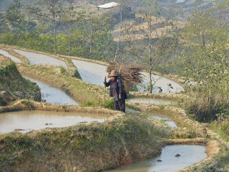 yunnan-rice-terraces-3