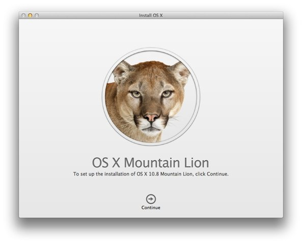 Mountain Lion Installation dialogue
