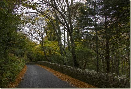 01.Caragh Lake - Kerry