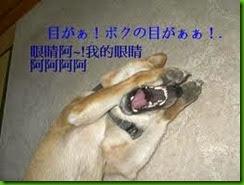 clip_image138[4]