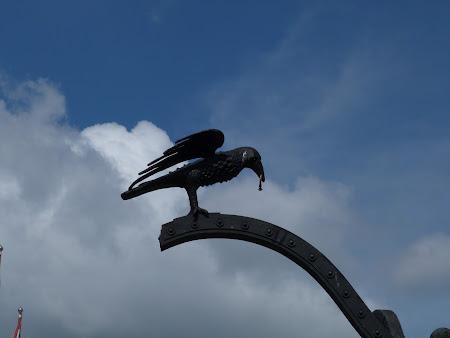 Obiective turistice Budapesta: corbul, simbolul Corvinestilor