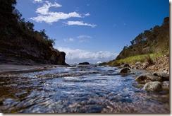 stony-creek-stream