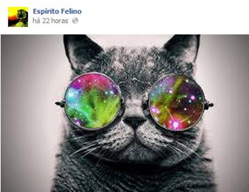 espiritofelino5