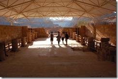 Oporrak 2011 - Jordania ,-  Petra, 21 de Septiembre  459