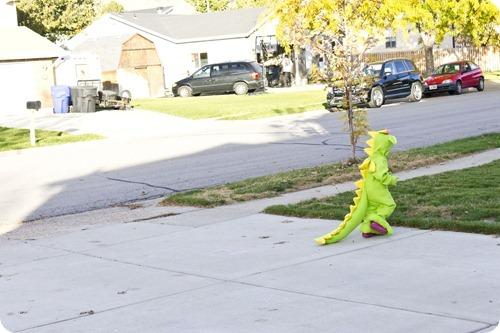 Hailey dragon on the run