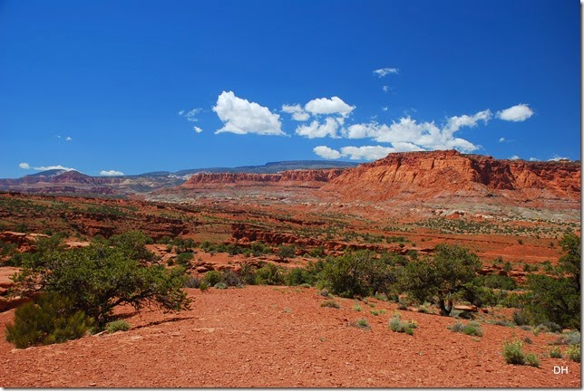 05-26-14 A West Side of Capital Reef NP (75)