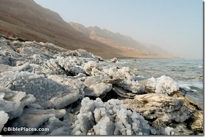 Dead Sea shoreline with salt crystals, tb022806387