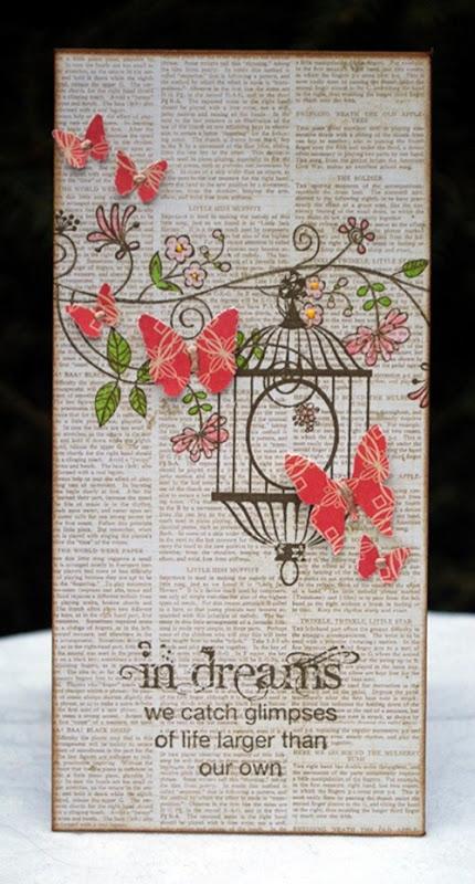 in dreams butterflies