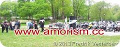 bm-image-717651 MC Gudstjänst Rålambshov Jesusmanifestationen 130518 med amorism