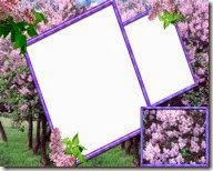 PNG frame (3)