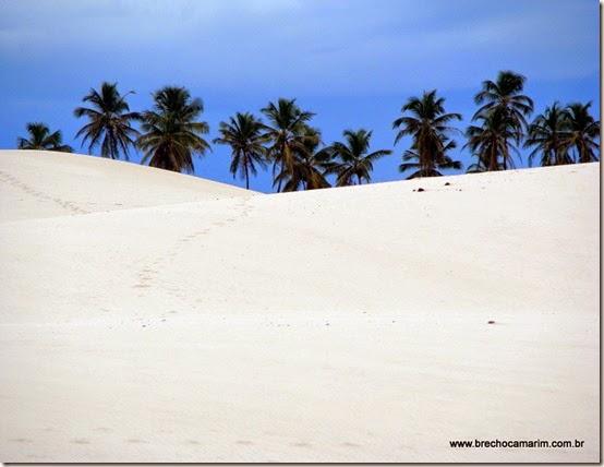 um dia na areia branca...