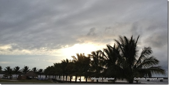 Florida_Jan2014 005