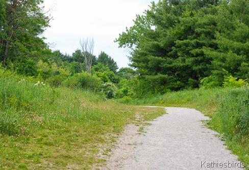 3. trail-kab