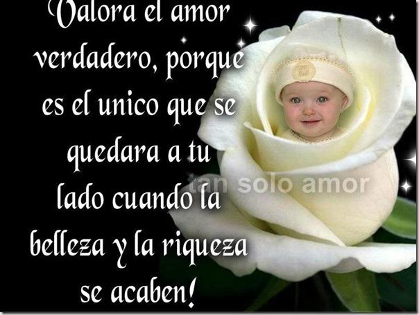amor facebbok (73)