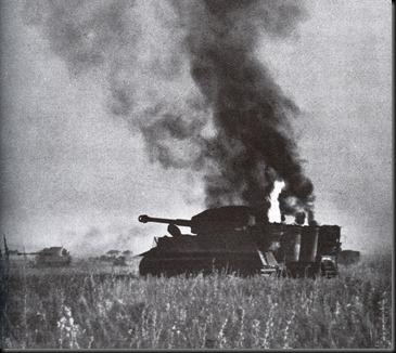 Tiger-burning-px800
