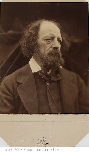 'Alfred Tennyson' photo (c) 2008, Preus  museum - license: http://creativecommons.org/licenses/by/2.0/