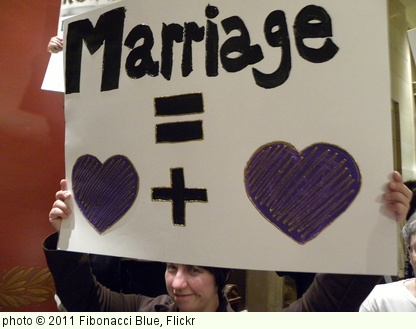 'Protest against a constitutional amendment banning same sex marriage' photo (c) 2011, Fibonacci Blue - license: http://creativecommons.org/licenses/by/2.0/