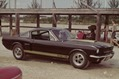Ford-Mustangs-15