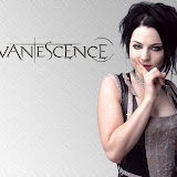 Evanescence - Amy Lee 13
