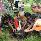 Let's Plant Our Apple Trees