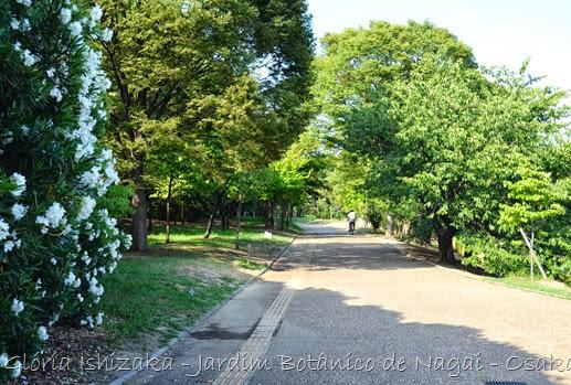 Glória Ishizaka - Jardim Botânico Nagai - Osaka 34