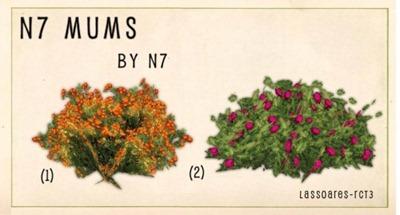 n7 Mums (n7) lassoares-rct3