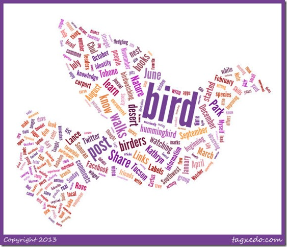 Word Cloud Bird