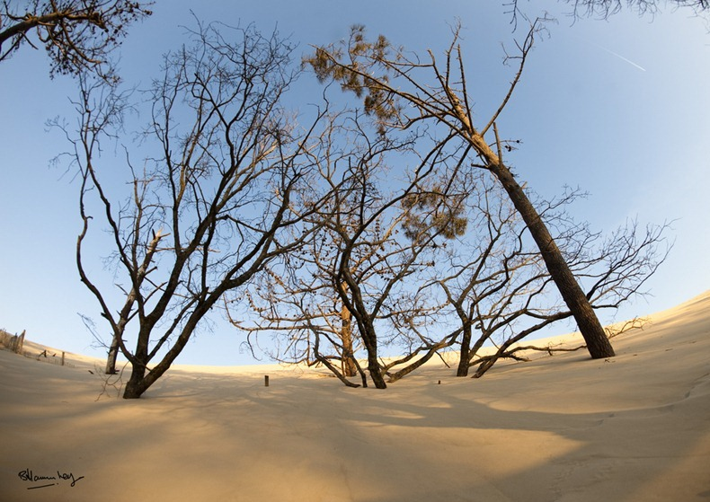 dune-pyla-7