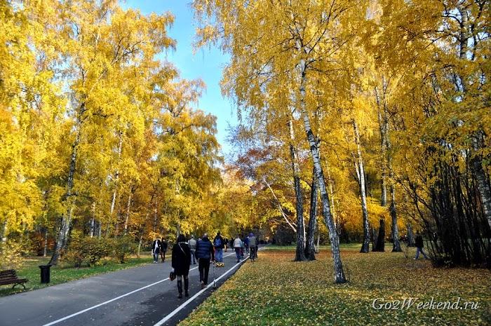 Botanicheskiy_sad_moskva_18.jpg