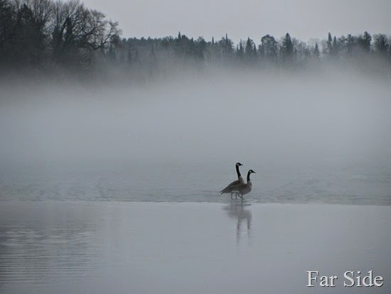 Long Lake Fog March 17 (2)