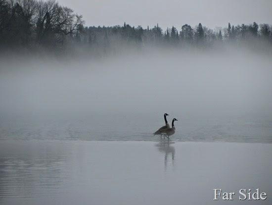 Long Lake Fog March 17 (2)