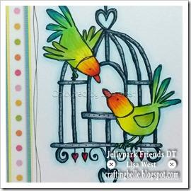 Love Birds Cage (2)