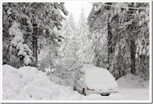 121223_snow_055