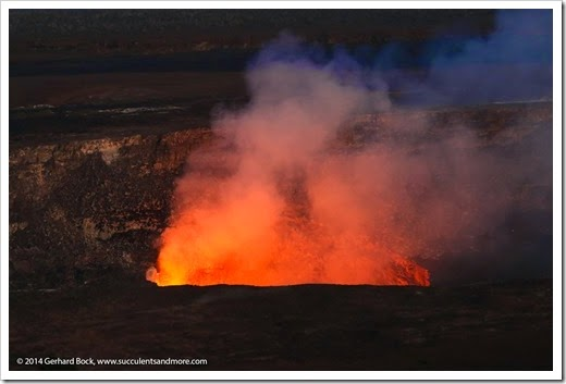 140724_HawaiiVolcanoesNP_0259
