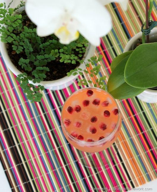 Pomegranate Mini Ice Cubes via homework    carolynshomework