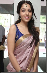 Lekha Washington @ Kalyana Samayal Saadham Audio Launch Stills